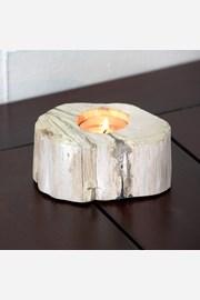 Svietnik skamenené drevo svetlý